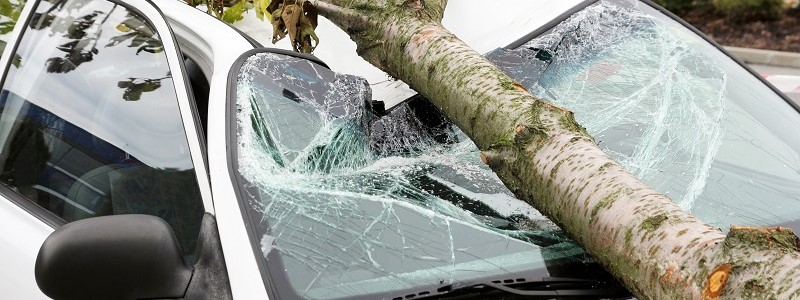 Schade aan auto door storm: stormschade & stormdekking…